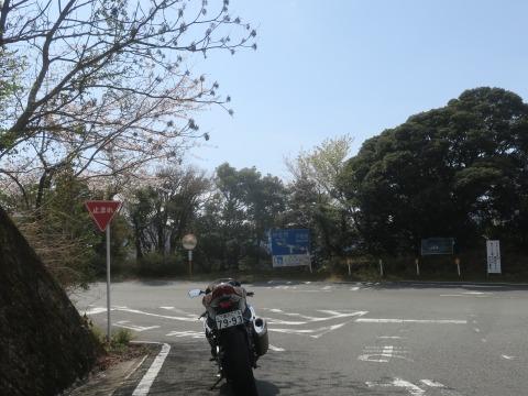 IMG_5369.jpg
